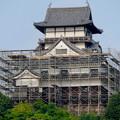 天守保蔵工事中の犬山城(2019年8月18日) - 26