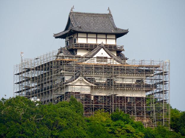 天守保蔵工事中の犬山城(2019年8月18日) - 29