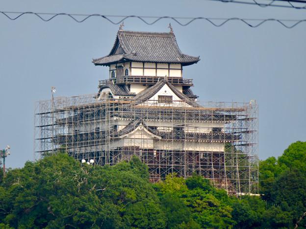 天守保蔵工事中の犬山城(2019年8月18日) - 30