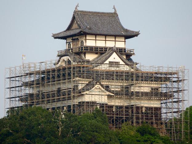 天守保蔵工事中の犬山城(2019年8月18日) - 34