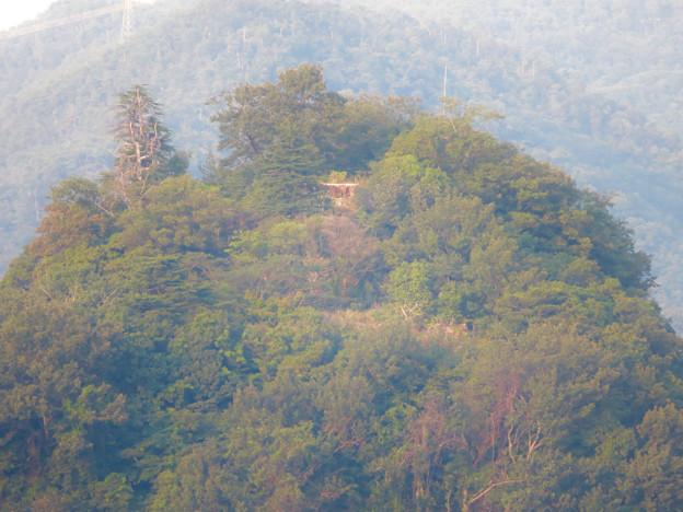ライン大橋の上から見た鵜沼城跡の岩山 - 2:頂上部の平たくなってる部分?とアンテナ
