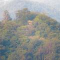 Photos: ライン大橋の上から見た鵜沼城跡の岩山 - 2:頂上部の平たくなってる部分?とアンテナ