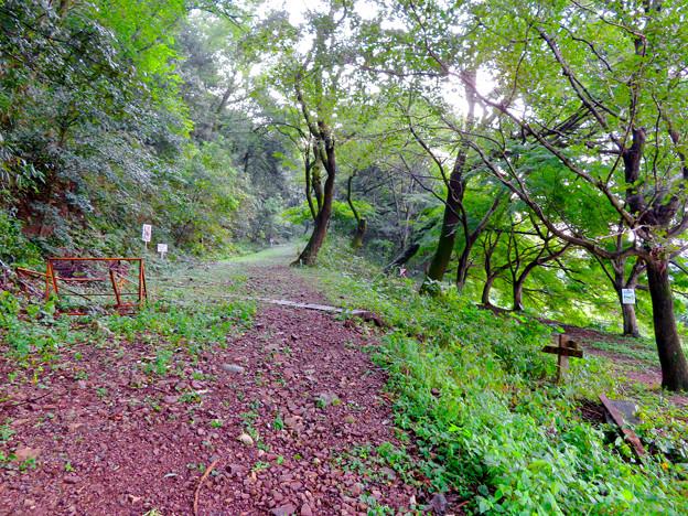 伊木山:各務原市少年自然の家近くの山道入り口