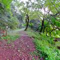 Photos: 伊木山:各務原市少年自然の家近くの山道入り口
