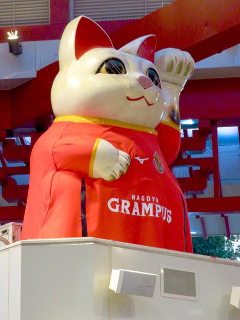 グランパスのユニフォームを着てた招き猫広場の招き猫 - 4
