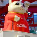 Photos: グランパスのユニフォームを着てた招き猫広場の招き猫 - 4