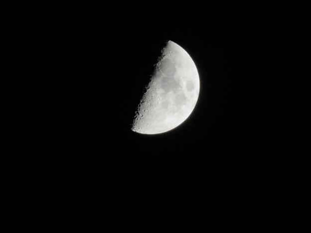 いつもより少し大きく見えた半月 - 5