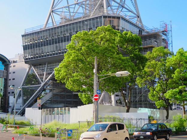 リニューアル工事中の名古屋テレビ塔(2019年9月7日) - 3