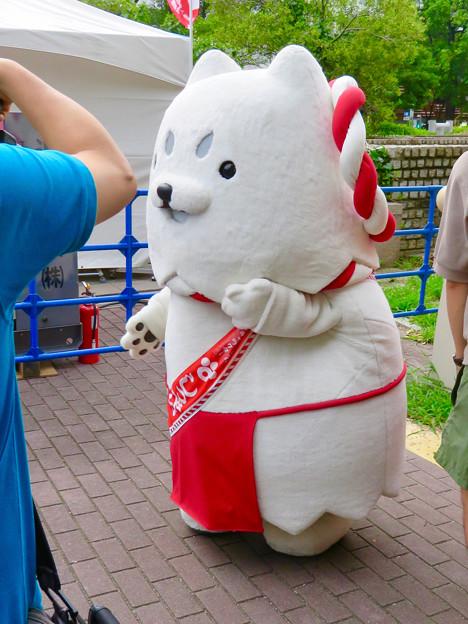 ふるさと全国県人会まつり 2019 No - 25:静岡県磐田市の狛犬モチーフのゆるキャラ「しっぺい」