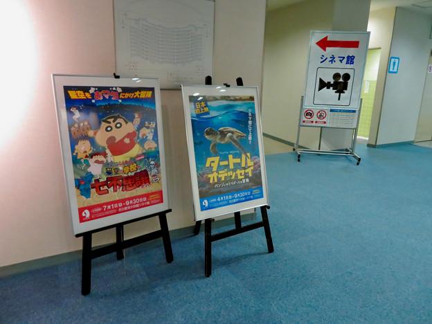 名古屋港水族館:シネマ館入り口