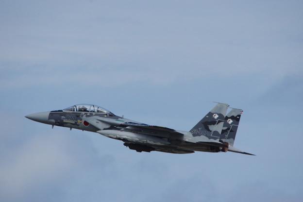 F-15DJ・アグレッサー