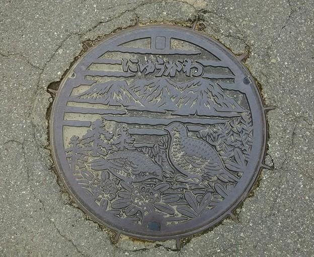 岐阜県丹生川村(にゅうかわむら)(現高山市丹生川町)