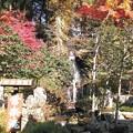 「妙雲寺」の滝