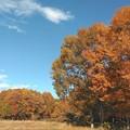 写真: 平成最後の秋の日