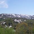 写真: 残雪と新緑