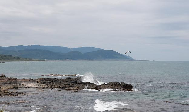 Photos: 千畳岩?