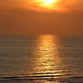 写真: 夕陽の道