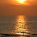 Photos: 夕陽の道