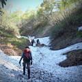 若者が雪渓を歩く