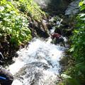 若者の滝登り