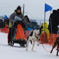 Photos: 3頭引き3kmレース
