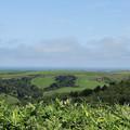 宗谷丘陵から一望2