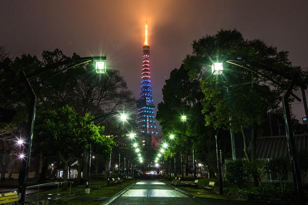 パラリンピック ライトアップ