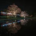 写真: ローカル列車と桜