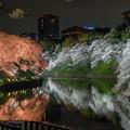 千鳥ヶ淵 桜ライトアップ 2