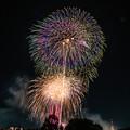 Photos: いたばし花火 4