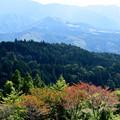 Photos: 山
