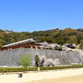 写真: 城山公園から二ノ丸公園を望む