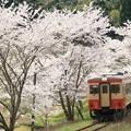 いすみ鉄道 キハ20 1303