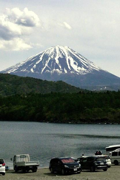 西湖から見た富士