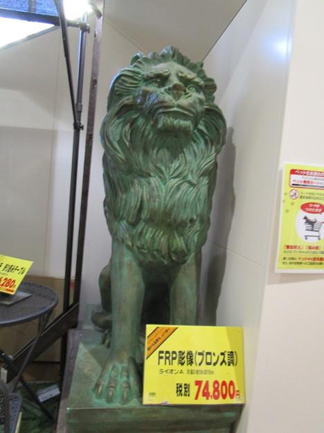 ライオンさんは1匹