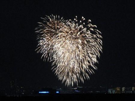 さいたま市の政令指定都市15周年花火大会 (50)