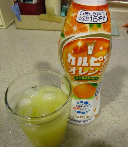 カルピスのオレンジ