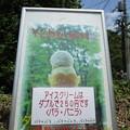 Photos: アイスクリームはダブルで250円
