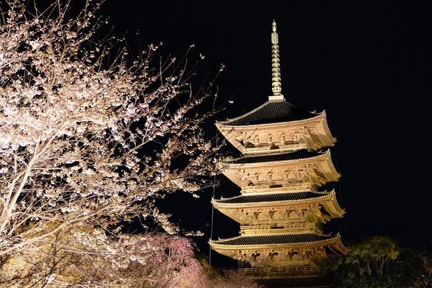 2019-03-31-東寺夜間拝観_06