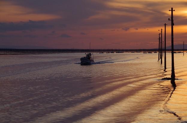 Photos: 2月7日 電柱の立つ海