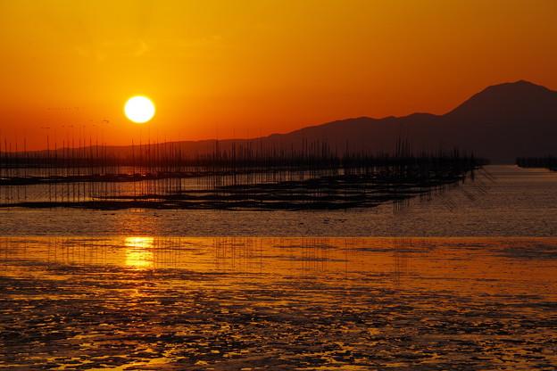 海苔の養殖場