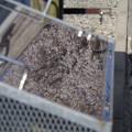 写真: 第131回モノコン ステンレス製ごみ箱にも春
