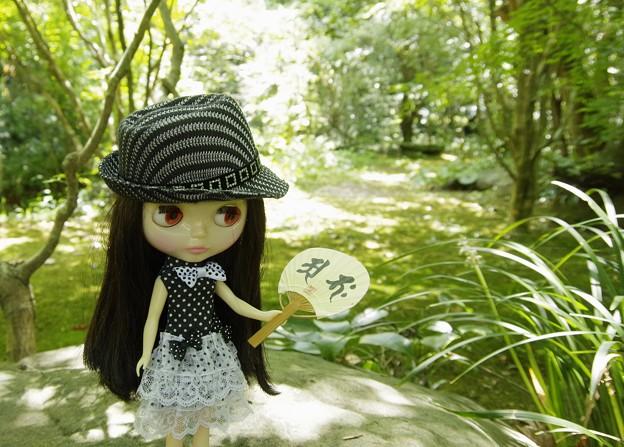 日本の夏は・・・これ!