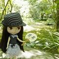 写真: 日本の夏は・・・これ!