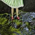 写真: わぁ~やめて~~靴が流されてたらどうするの><