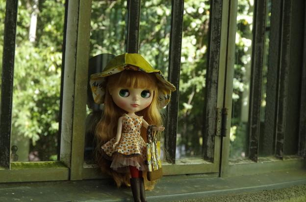 秋の新作ワンピ&帽子&バッグ