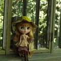 写真: 秋の新作ワンピ&帽子&バッグ