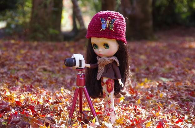 真剣 カメラ女子