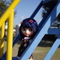 Photos: 公園で遊ぼう