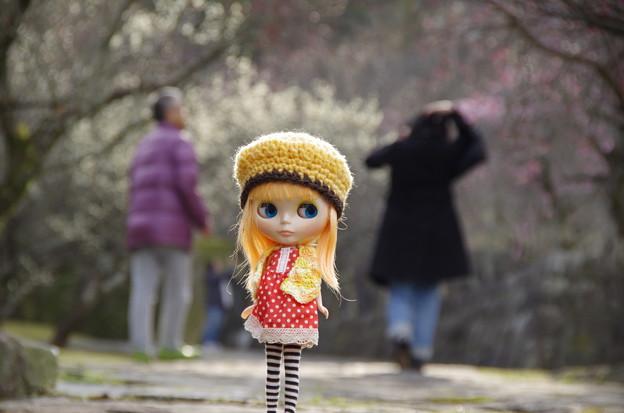 Photos: それぞれの春